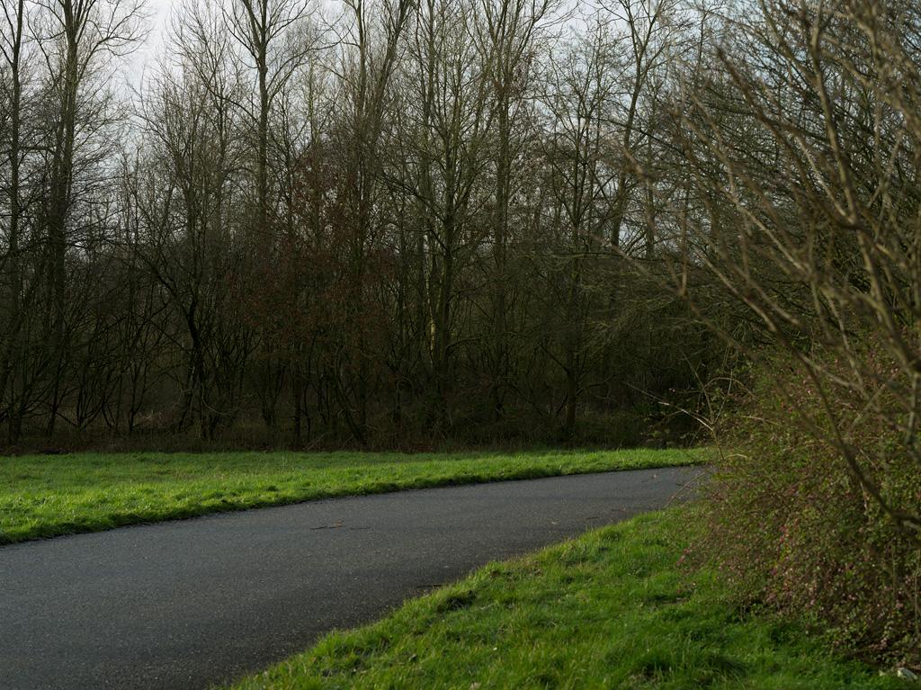De Brink (A50)